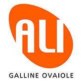 Ali Lohmann - Pulcini ovaiole